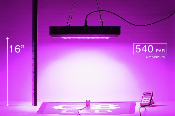 G8LED 240W PAR at 16 inches