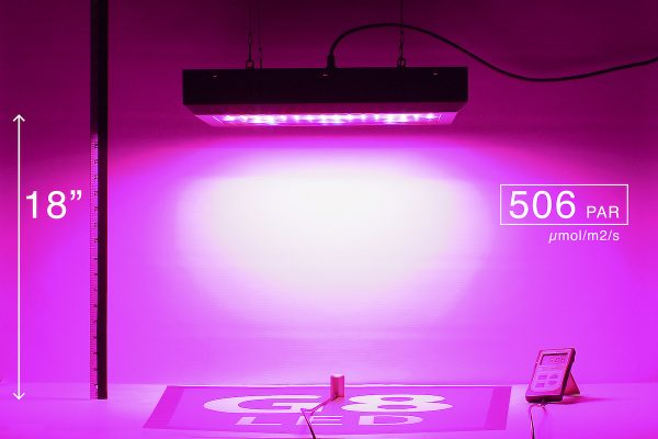 G8LED 450W Bloom PAR at 18 inches