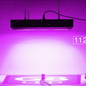 G8LED 450W PAR at 14 inches