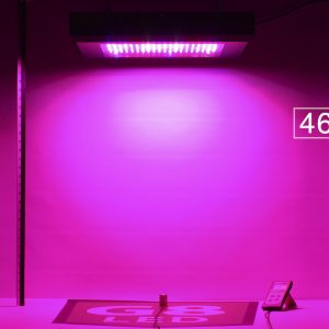 G8LED 600W Bloom PAR at 30 inches