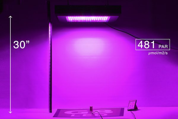 G8LED 600W PAR at 30 inches